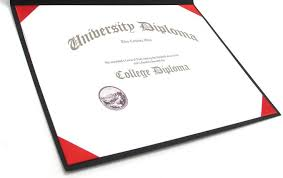 Resume CV Cover Letter  nursing application essay examples medical